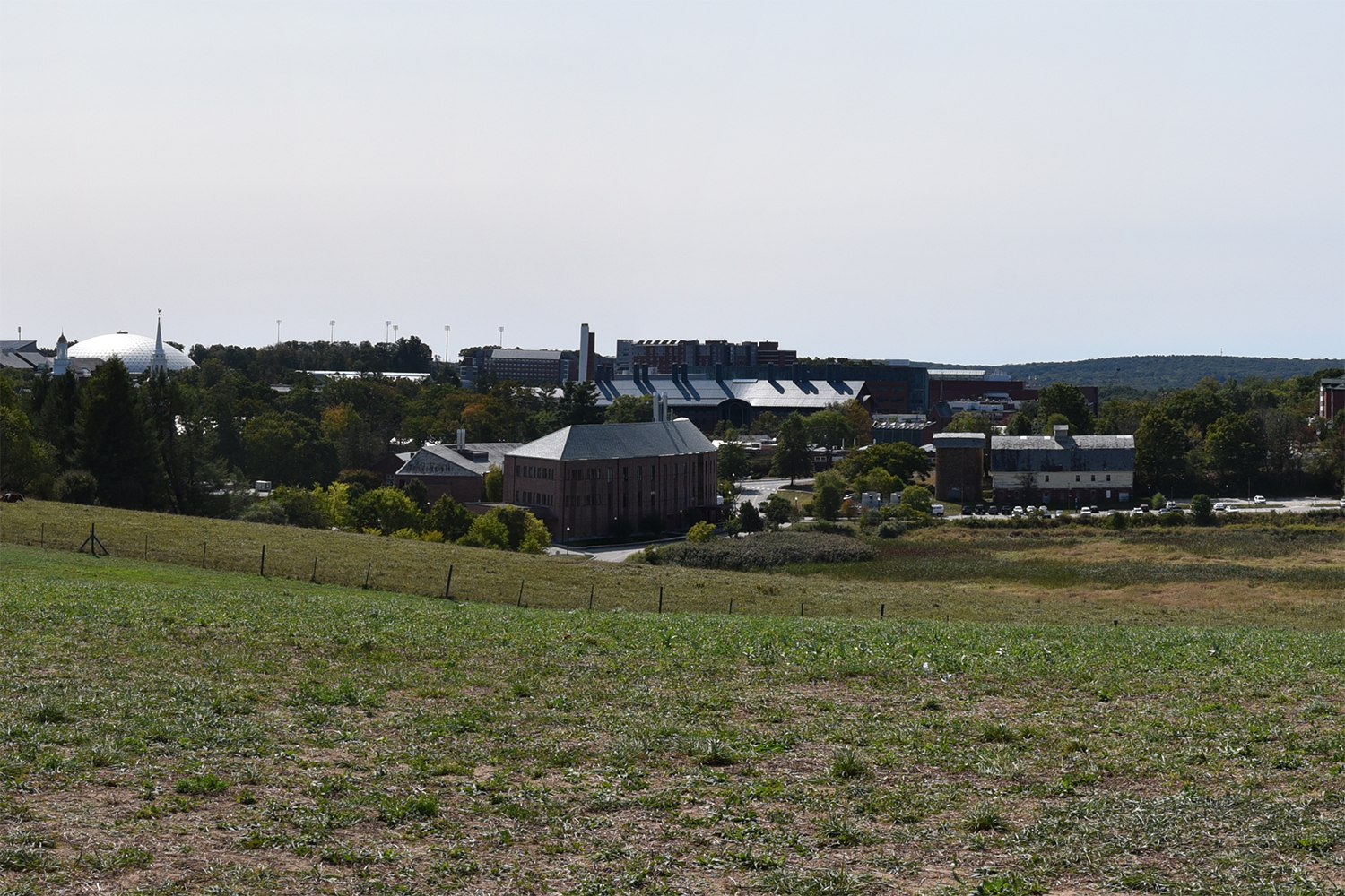 A view from the top of Horsebarn Hill